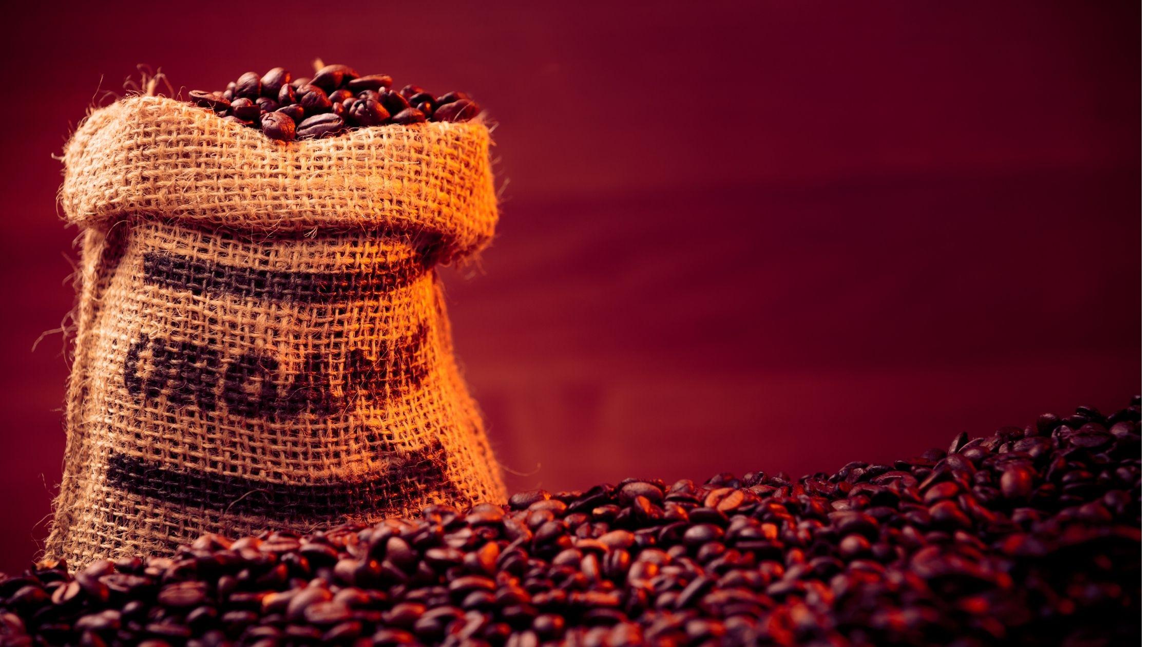 café orgánico perú