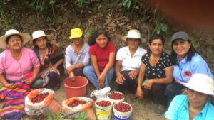 Mujeres productoras de café empoderadas a través de Café Femenino